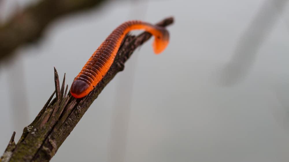 Crazy Fish - Vibro Worm 8,5cm Floating