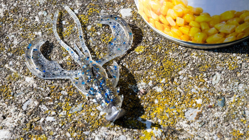 Dead Sticking auf Karpfen - Crazy Fish Nimble am Standup Jig
