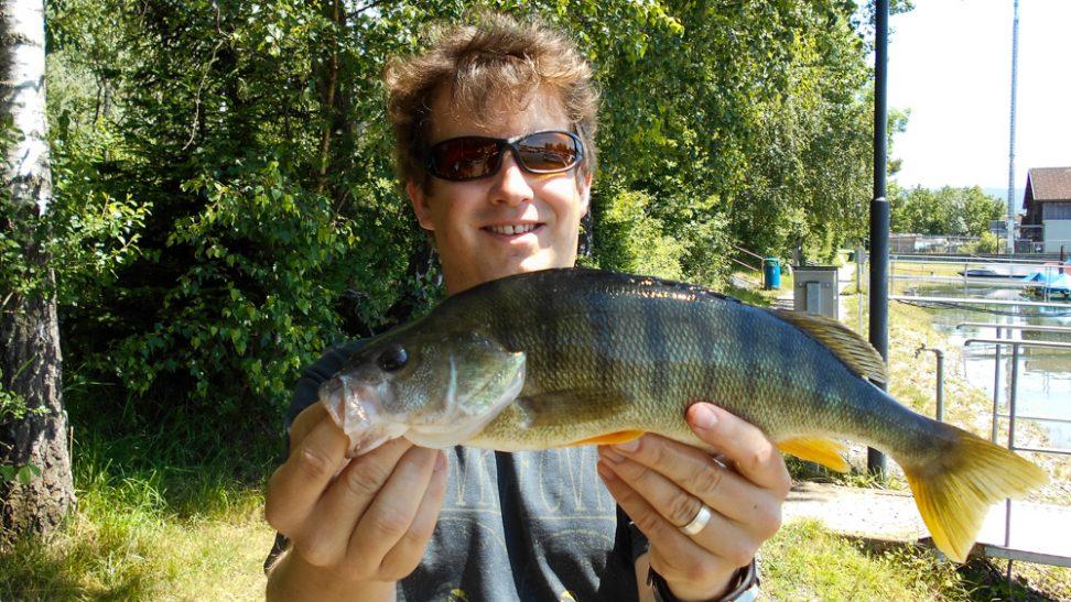 Barsch Personal Best - Frill Shrimp