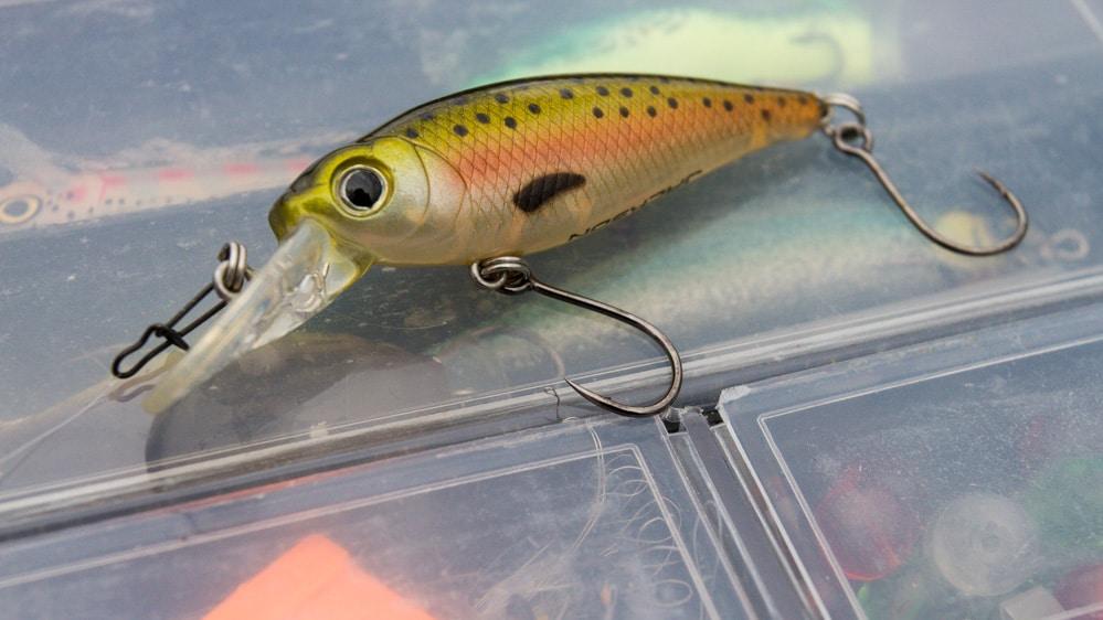 Abgerüsteter Jackson Wobbler - Gut für Angler und Fisch
