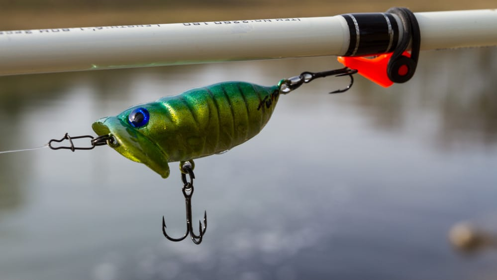 Topwater-Productions - Boogie Bug