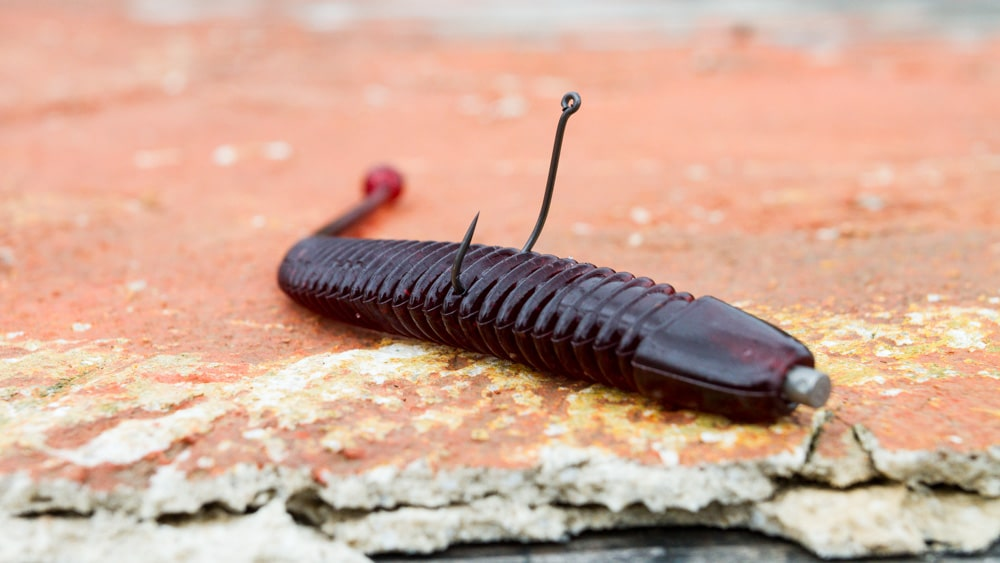 Molix - Sator Worm