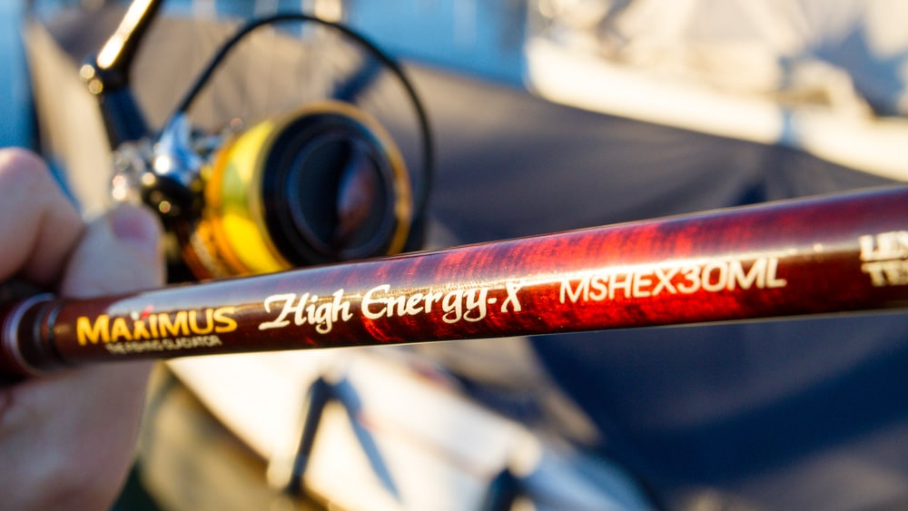 Maximus - High Engergy-X