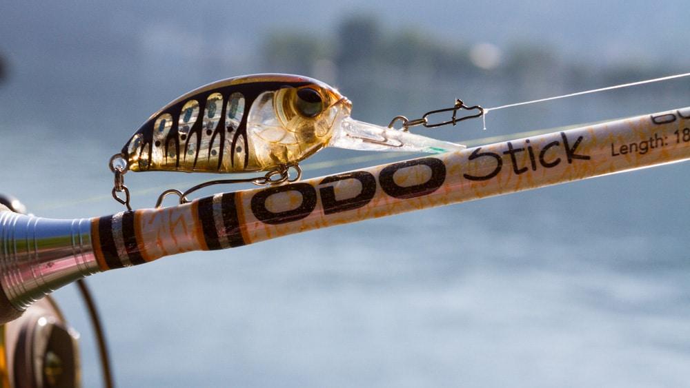 Doiyo Concept - Odo Stick