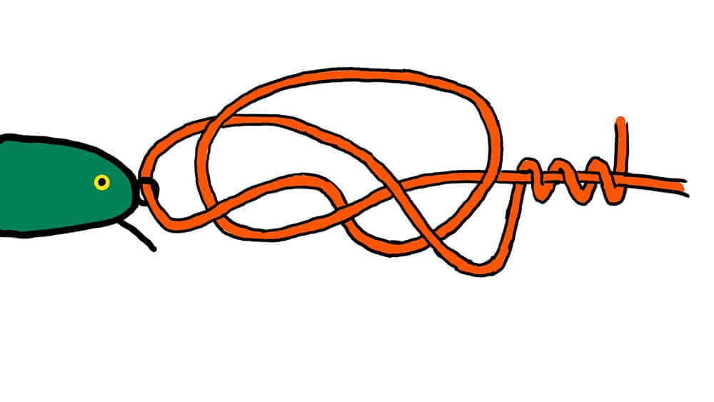 Rapala Knoten