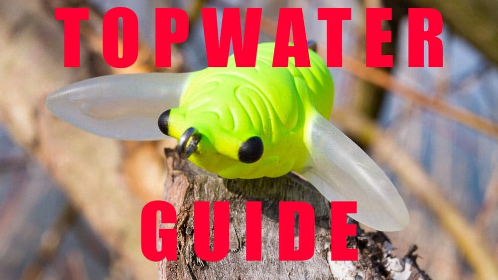 Topwater Guide