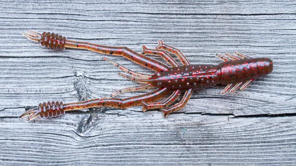 Reins Ring Shrimp